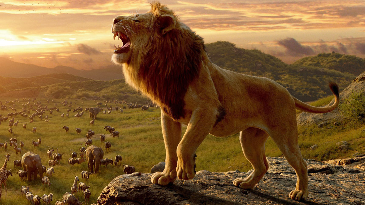 Hygge med Løverne ! !